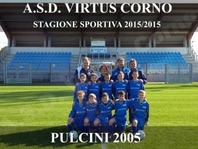 2016_PULCINI_2005